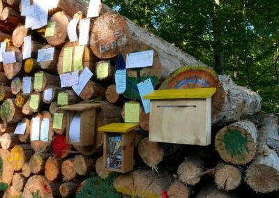 Die Wald Post